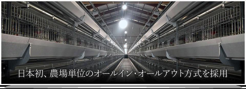 日本初、農場単位のオールイン・オールアウト方式を採用
